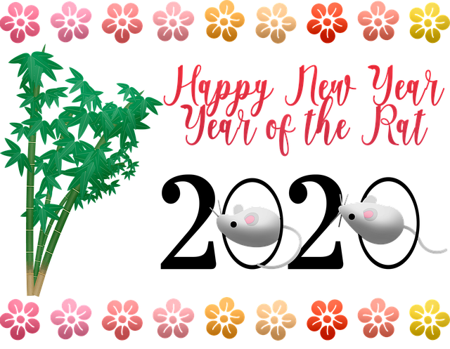 chinese-new-year-4682763_640.png